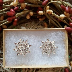 Rhinestone Silver Snowflake Earrings